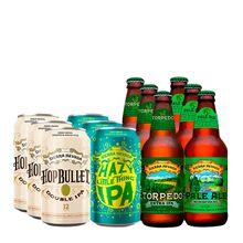 kit-de-cervejas-sierrra-nevada-double-12-unidades