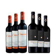 kit-10-vinicolas-consagradas